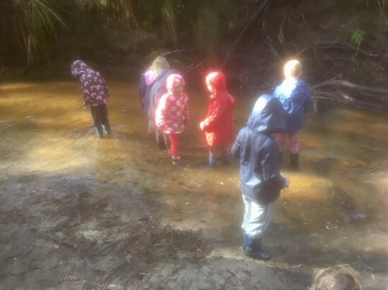 Kindy paddling in the creek